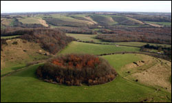 The North Downs in Kent